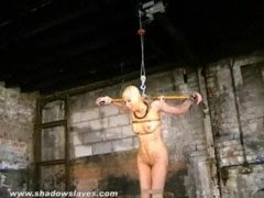 Bald asian bdsm