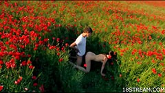 Sex between the poppies
