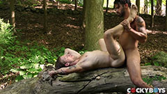 Nice gay sex in the forest