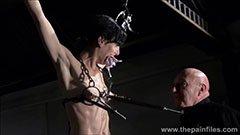 Den gråhårede mester og den nye slave